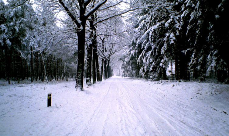 [img]http://www.oudje.nl/fotobewerken/fotoverbeteren/sneeuw.jpg[/img]